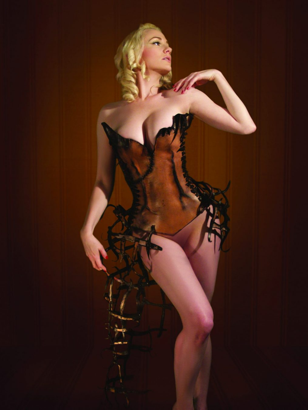 Corset, Wearable Art